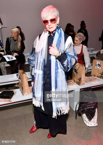 The Accidental Icon, Lyn Slater attends the Just In XX presentation during New York Fashion Week: The Shows at Gallery II at Spring Studios on...