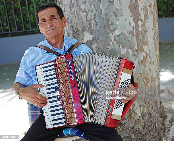 the accordion master - accordionist stock pictures, royalty-free photos & images