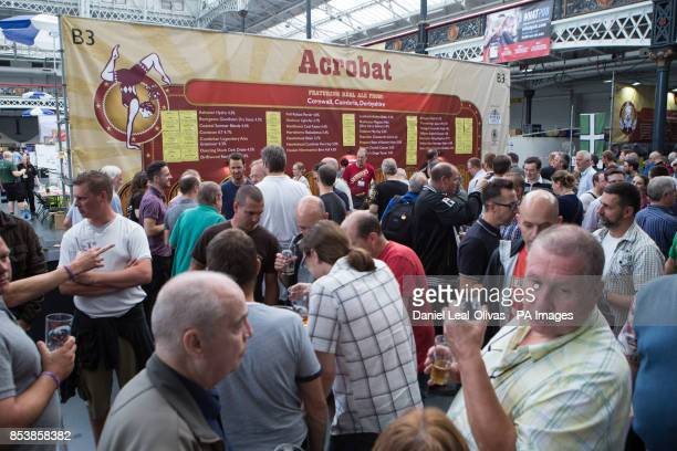 The 'Acrobat' beer stand at the Great British Beer Festival at Olympia London where Prince Harry visited yesterday during an unofficial visit