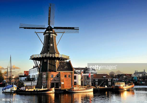 the adriaan windmill of haarlem - haarlem stock photos and pictures