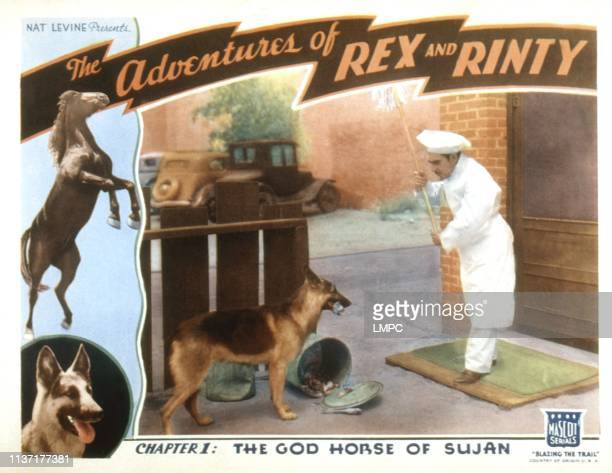 The Adventures Of Rex And Rinty lobbycard Rin Tin Tin 1935