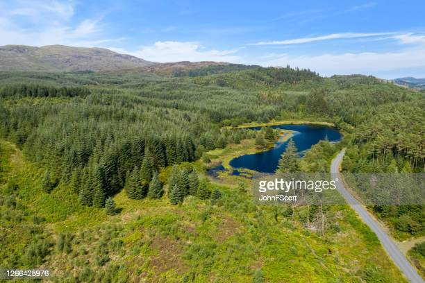 the aerial view from a drone of a small scottish loch in a remote area of dumfries and galloway - johnfscott stock pictures, royalty-free photos & images