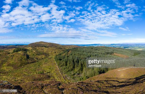 the aerial view of hills and forest in rural dumfries and galloway - johnfscott stock pictures, royalty-free photos & images
