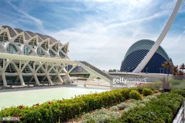 el agora (ciudad de las artes y las ciencias) de valencia - valencia fotografías e imágenes de stock