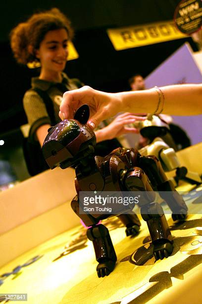 The Aibo robot dog is displayed June 27 2001 at the Tomorrows World science and technology show in London