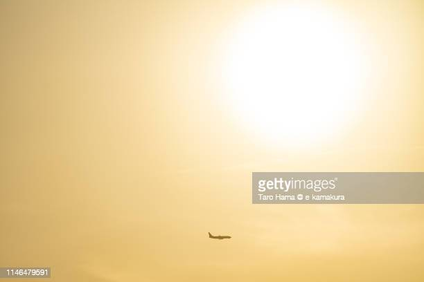 the airplane flying under evening sun in japan - taro hama ストックフォトと画像
