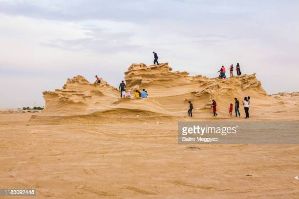 the al wathba fossil dunes - abu dhabi - fossil site stock pictures, royalty-free photos & images
