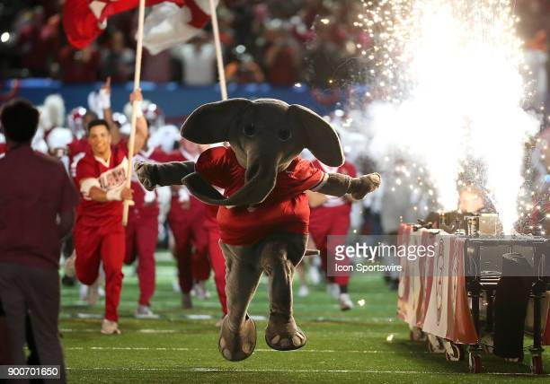 The Alabama Crimson Tide and mascot Big Al takes the field during the College Football Playoff Semifinal at the Allstate Sugar Bowl between the...