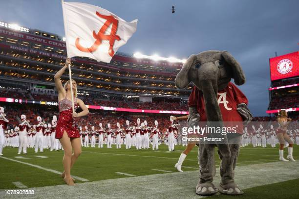 The Alabama Crimson Tide mascot 'Big Al' is seen prior to the CFP National Championship against the Clemson Tigers presented by ATT at Levi's Stadium...