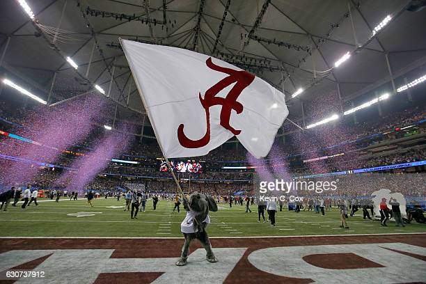 The Alabama Crimson Tide mascot celebrates after winning 24 to 7 against the Washington Huskies during the 2016 ChickfilA Peach Bowl at the Georgia...