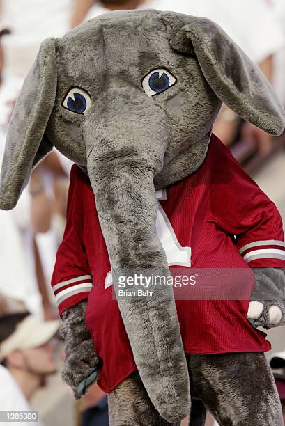 The Alabama Crimson Tide mascot stands on the field during the NCAA football game against the Oklahoma Sooners on September 7 at Memorial Stadium in...