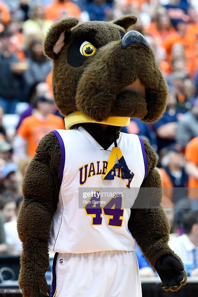 info for f0e90 93f2a The Albany Great Danes mascot Damien performs prior to the ...