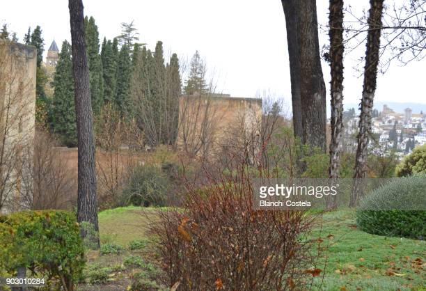 The Alhambra Castle in Granada