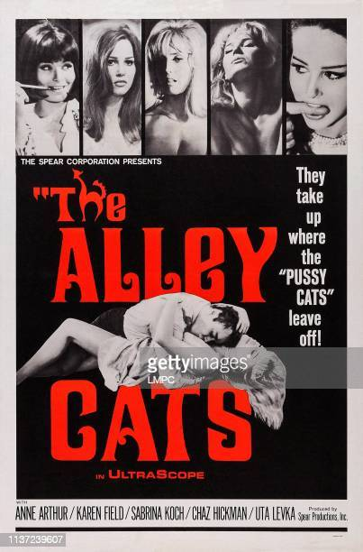 The Alley Cats poster US poster 1966