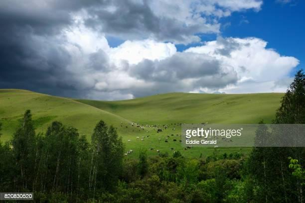 The Altai Republic in Russia
