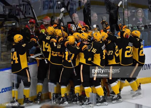 The American International Yellow Jackets celebrate after defeating the St Cloud State Huskies 21 in an NCAA Division I Men's Ice Hockey West...