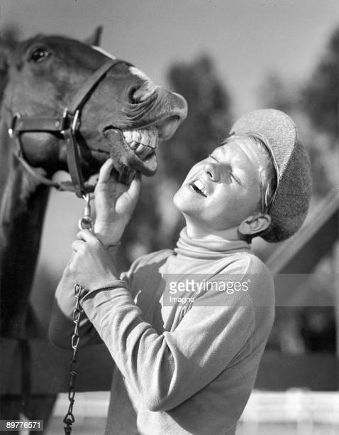The american Kidsstar Mickey Rooney brings during the shooting to the Hollywood Film Blood Lines the horse Faithful to laugh Photograph Around 1930