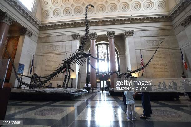 The American Museum of Natural History opens to the public on September 9 in New York City. - After being closed for nearly six months due to...