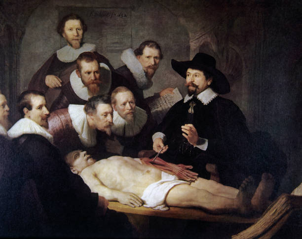 The Anatomy Lesson Of Dr Pictures Getty Images