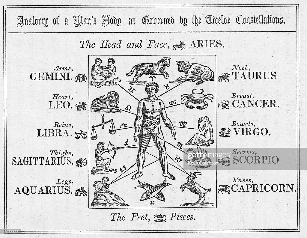 The Anatomy Of A Mans Body As Governed By The Twelve Constellations