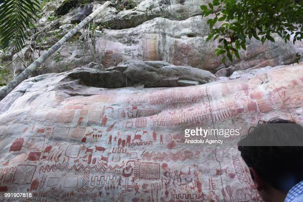 The ancient rock art that depicting animals and humans is seen at the Chiribiquete National Park in Guaviare Cerro Azul Colombia on July 02 2018...