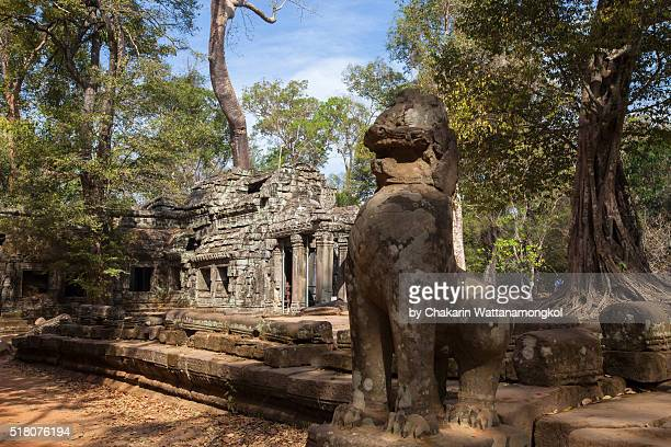 the ancient ta prohm temple in the rain forest. - khmer stock pictures, royalty-free photos & images