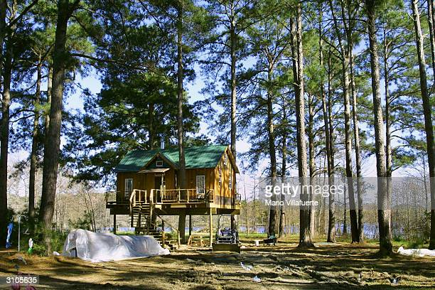 The 'Angel's Landing' one bedroom residential tree house hangs amid the trees March 16 2004 on the banks of Cross Lake near Shreveport Louisiana...