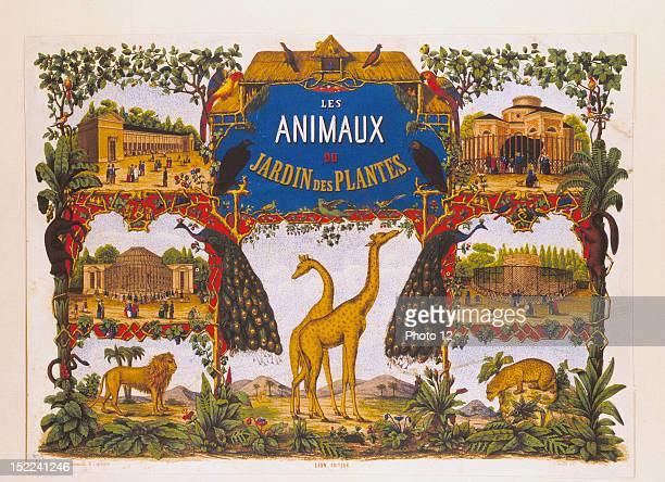 The animals of the Jardin des Plantes in Paris Chromolithograph by Engelmann Date 19th century ParisBibliotheque du Museum