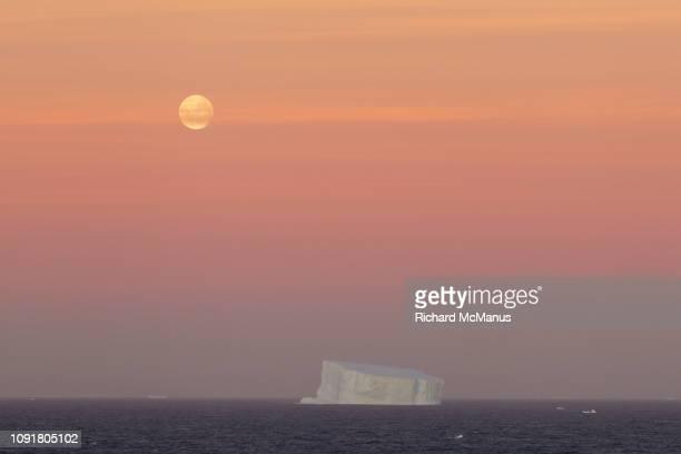 the antarctic sound - antarctic sound stockfoto's en -beelden