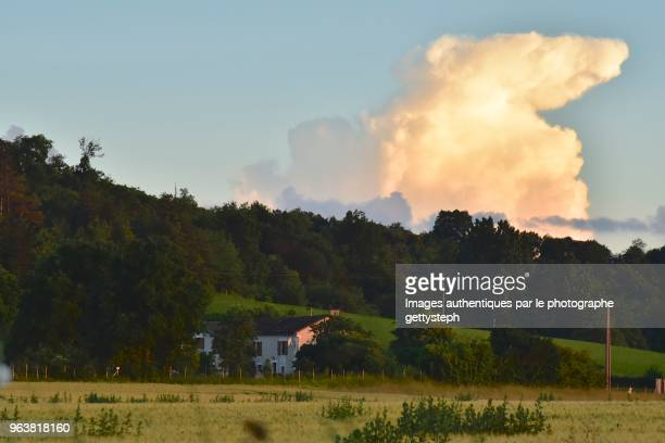 The anvil form of cloud with sunset light above rural landscape