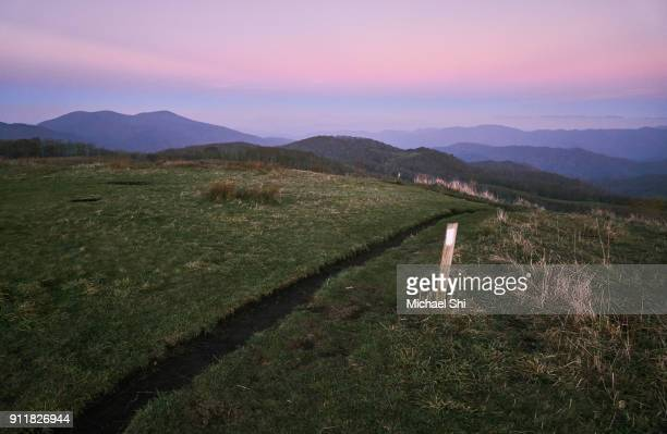 The Appalachian Trail footpath in soft golden hour light passes through a green meadow of Max Patch at dusk