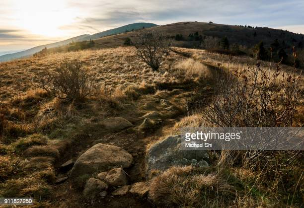 the appalachian trail footpath winding along the ridge of roan mountain's balds in tennessee under blue sky in autumn. the white blaze of the at is clearly visible on the rock in the foreground. - appalachian trail stock pictures, royalty-free photos & images