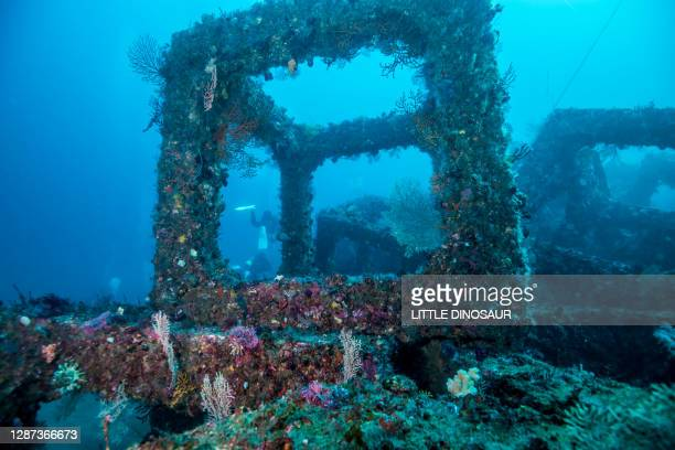 the appearance of the artificial fish reef - reef stock pictures, royalty-free photos & images