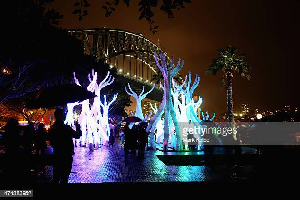 The 'Arclight' installation is seen illuminated as part of the Vivid Sydney Festival on May 22 2015 in Sydney Australia Vivid Sydney is an annual...