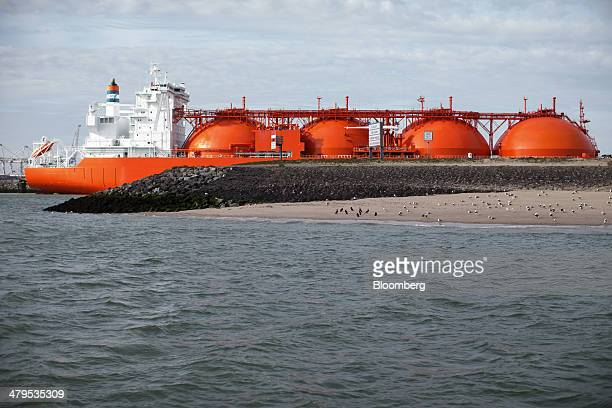 The Arctic Lady liquid natural gas tanker vessel is seen at the Gate LNG terminal operated by Royal Vopak NV in Rotterdam Netherlands on Wednesday...