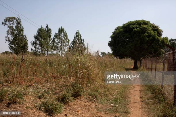The area that LRA fighters allegedly came from as they attacked an IDP camp in 2004, on February 04, 2021 in Lukodi, Uganda. On May 19th more than...