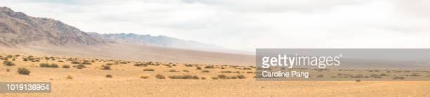 The arid landscape of Gobi desert along a mountain range, covered with desert shrubs.
