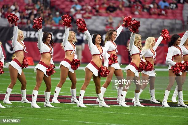 The Arizona Cardinals cheerleaders perform on the field prior to the start of a game against the Jacksonville Jaguars at University of Phoenix...
