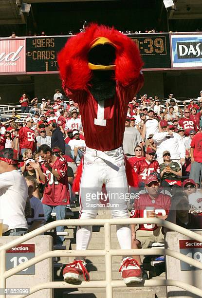 The Arizona Cardinals mascot covers his eyes after a Cardinal penalty kept the San Francisco 49ers first touchdown drive alive on December 12 2004 at...