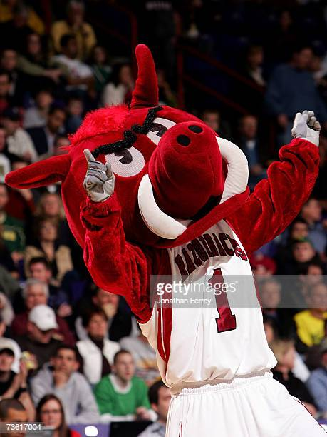 The Arkansas Razorbacks mascot cheers on fans during a break in game action in the first round of the NCAA Men's Basketball Tournament against the...