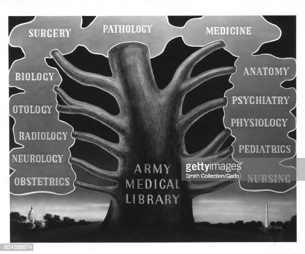 The Army Medical Library as the tree of medical knowledge with branches representing the major fields collected by the library Washington District of...