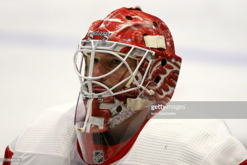 NHL: FEB 12 Red Wings at Predators : News Photo
