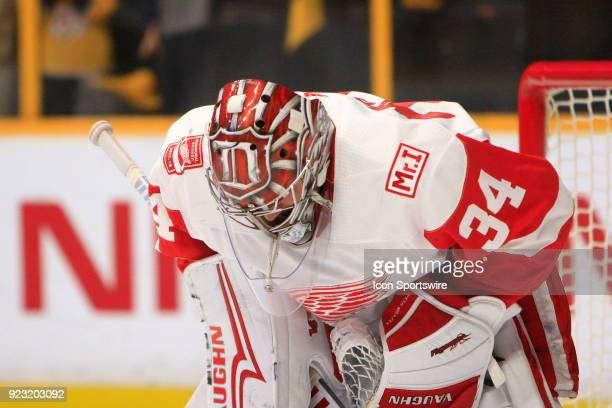 The artwork on the top of the mask of Detroit Red Wings goalie Petr Mrazek is shown during the NHL game between the Nashville Predators and the...