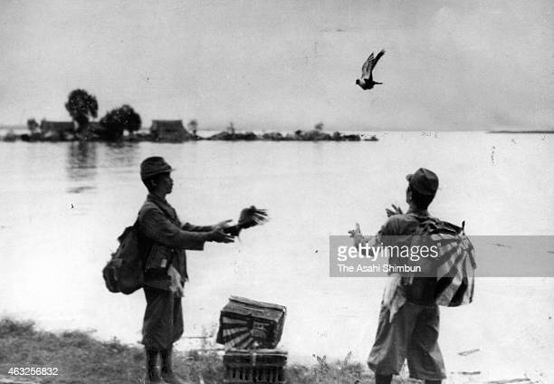 The Asahi Shimbun war correspondents release carrier pigeons to report the attack of Wuhan during the SinoJapanese War circa 1938 in Wuhan China