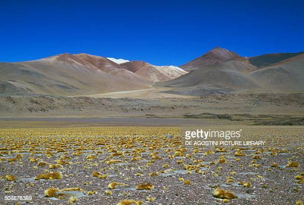 The Atacama Desert near Paso de Laguna Seca Chile