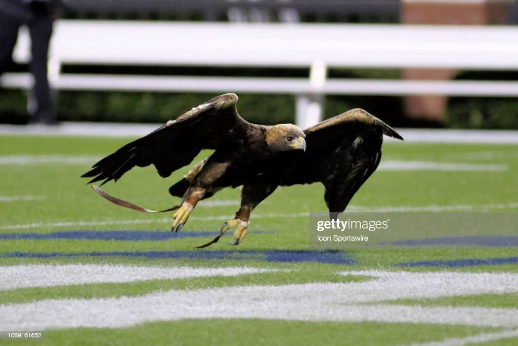 The Auburn Eagles Flies Before The Alabama 7a State Championship