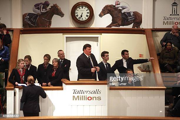 The auctioneers at Tattersalls try to encourage an unenthusiastic crowd to invest in Lot number 1113 a foal that went on sale on November 28 2014 in...