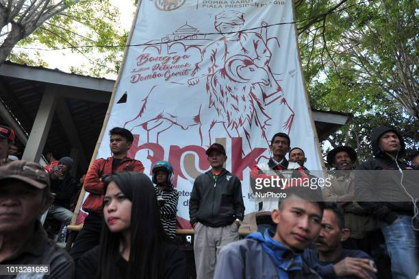 The audience saw the Garut sheep during the dexterity match in the village of Rancabango Garut West Java in August2018 The match was attended by 300...