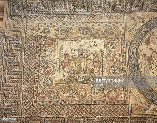 The Aurigas mosaic 4th century The victoriuos charioteer Marcianus with his chariot He carries a palm of triumph in one hand and the whip in the...