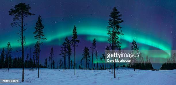 the aurora & the great bear - swedish lapland stock-fotos und bilder